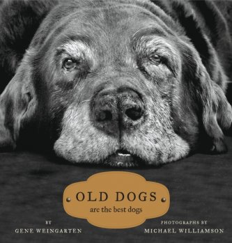2008_1217_Old_Dogs_cover